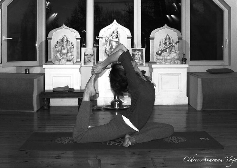 rajakapotasana avarana yoga cours personnalisés yoga individuels groupe particuliers professionnels à domicile, chez moi, sur votre lieu de travail
