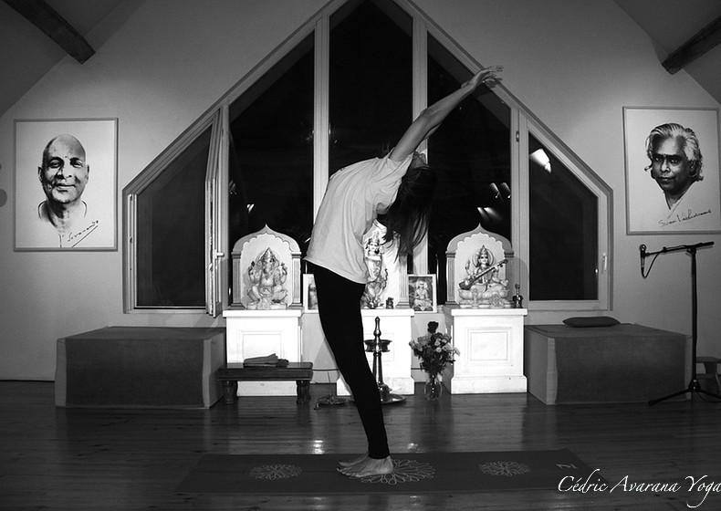 salutation soleil avarana yoga cours personnalisés yoga individuels groupe particuliers professionnels à domicile, chez moi, sur votre lieu de travail