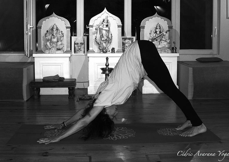 shvanasana avarana yoga cours personnalisés yoga individuels groupe particuliers professionnels à domicile, chez moi, sur votre lieu de travail